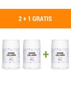 Plent - Gehydrolyseerde Vis Collageen Peptiden - 3 x 300 gram - Berry