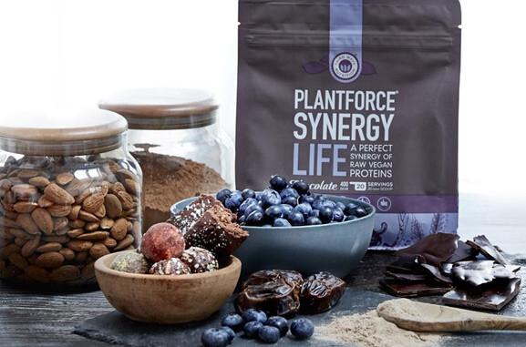 plantforce synergy protein chocolat